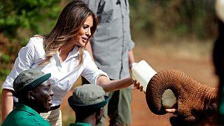 بچه فیلی که ملانیا ترامپ و محافظانش را ترساند