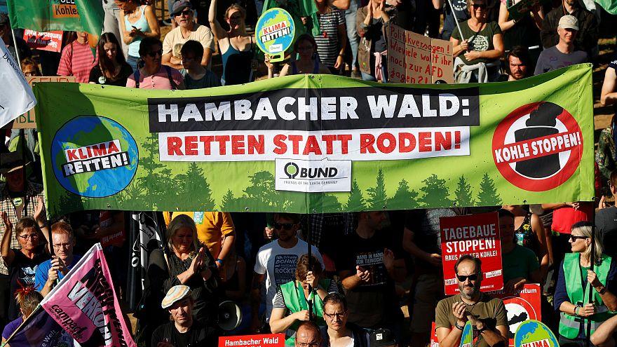 Freudenfeier und Protest bei größter Demo am Hambacher Forst: 10 Fotos und Tweets