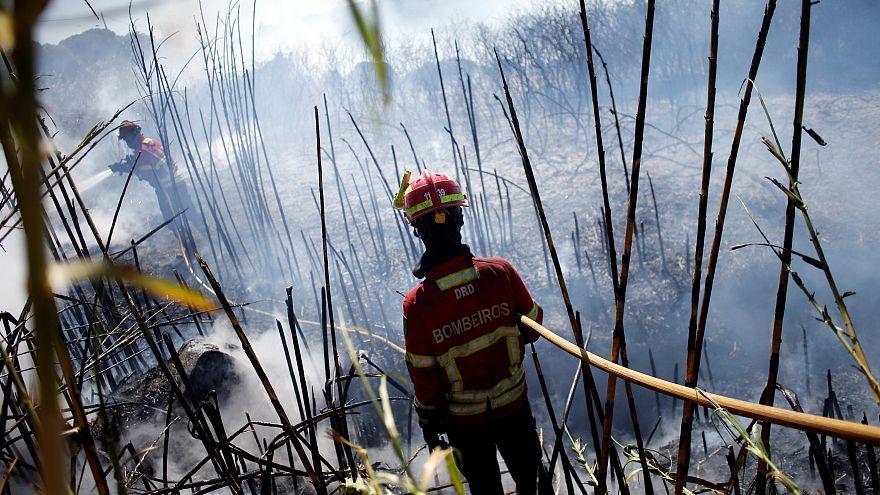 Incêndio em Sintra dominado