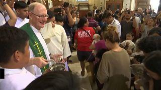 Filippine: grande successo per l'annuale Benedizione degli Animali