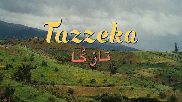 Egy boldogabb élet reményéről szól a Tazzeka