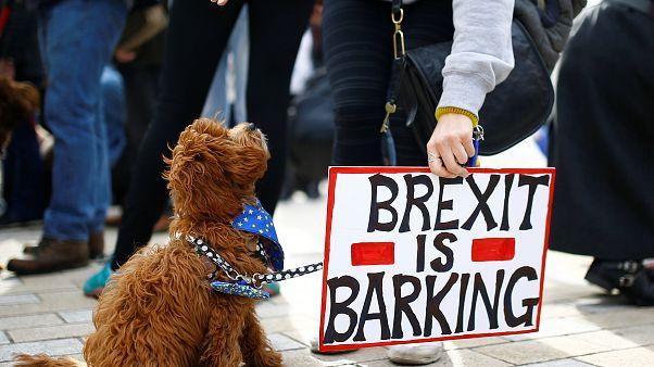The brief from Brussels : pour A.C Grayling, l'Ecosse devrait partir en cas de Brexit