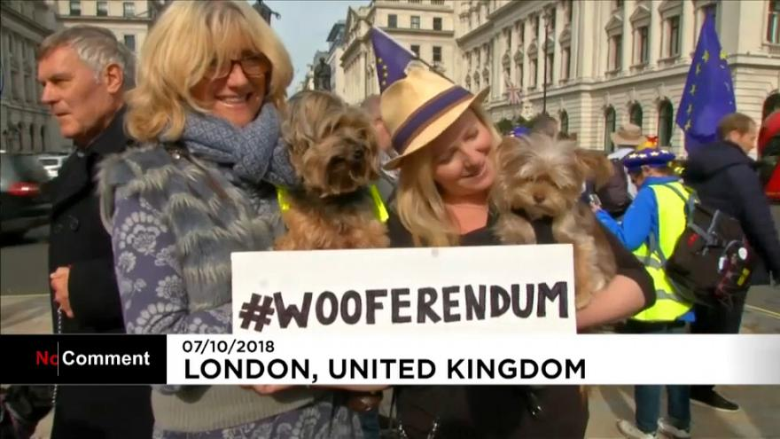 Dog owners demand second Brexit referendum