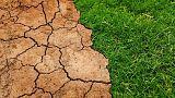 BM Raporu: Küresel ısınmada Paris Anlaşması taahhütleri yetersiz