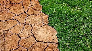 کارشناسان سازمان ملل: گرمایش زمین را به ۱.۵ درجه سانتیگراد محدود کنید