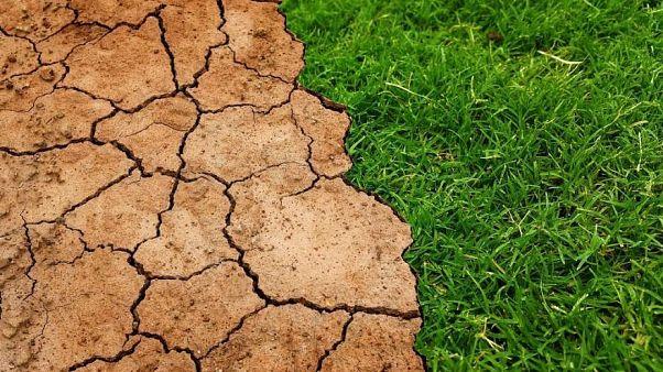 Klimawandel: Welt braucht beispiellose Antwort um den Temperaturanstieg zu stoppen