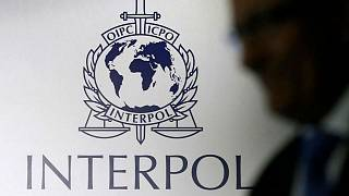 What is Interpol? | Euronews Answers