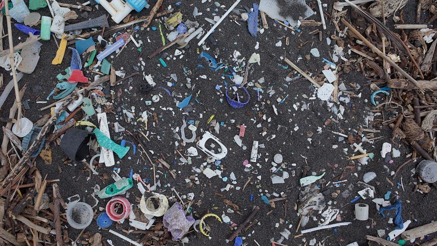 Plastic waste on remote South Atlantic islands ten times greater than a decade ago, research says