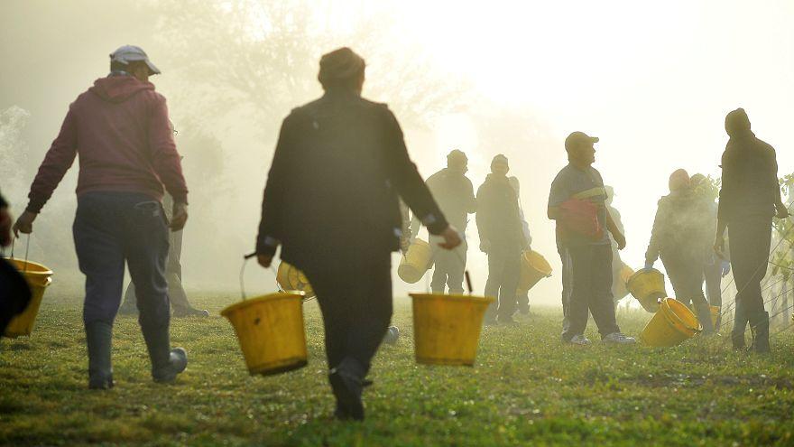 L'UE devra réfléchir à des voies légales pour l'immigration selon l'ONU