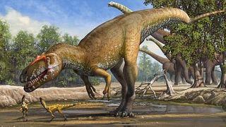 Çin'de milyonlarca yıllık dinozor yumurtası fosilleri bulundu