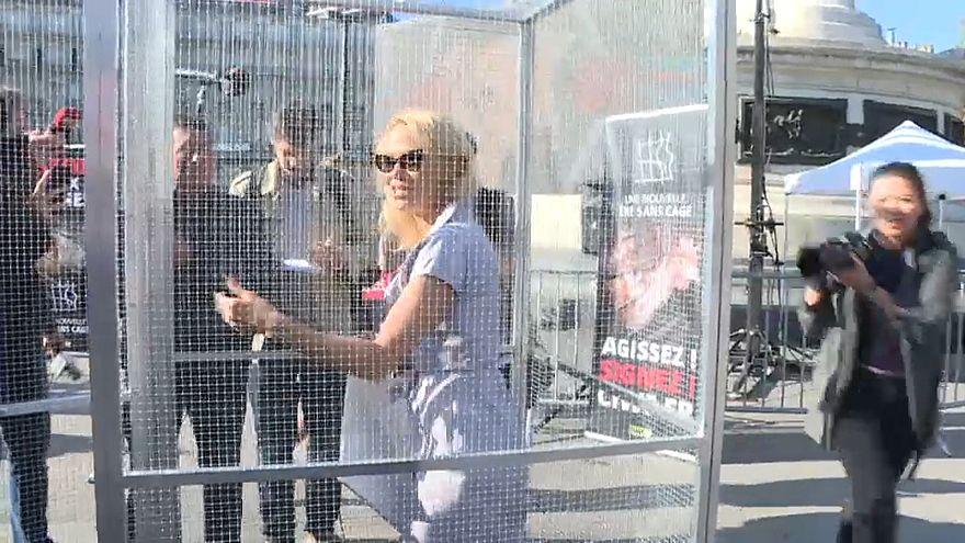 Pamela Anderson se enjaula en París para denunciar la cría de animales