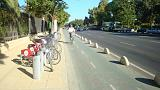 Bike lane on the Paseo de la Palmera in Seville