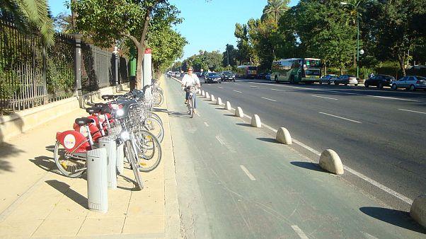 Bike lane on the Paseo de la Palmera in Seville