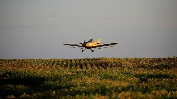 Almanya'da uçak kazası: Can kayıpları var