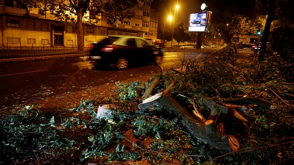 Clean-up begins after hurricane batters Portuguese atlantic coast