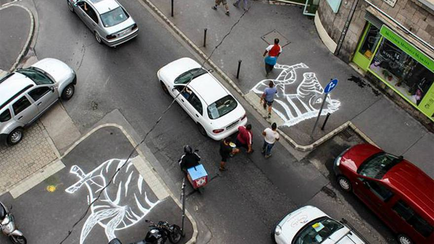 Activists paint zebra's head and tail near road in bid to get crossing