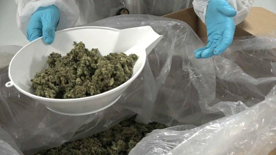 Kanada: Große Hoffnungen auf Cannabis-Legalisierung