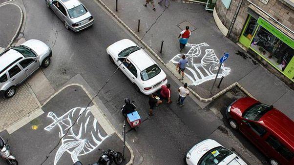 A budapesti Hattyú utcai zebrarajz