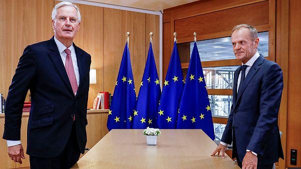 دیدار نماینده بریتانیا در امور برکسیت و رئیس شورای اروپا