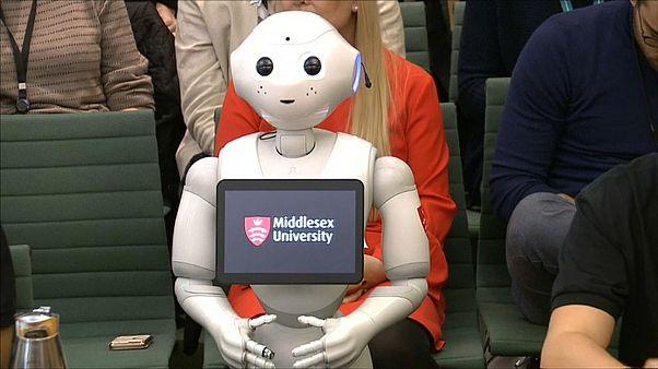 """شاهد: البرلمان البريطاني يستجوب """"الروبوت فلفل"""""""