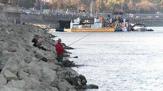 Rund 40 Zentimeter: Stand der Donau sinkt auf Rekordtief