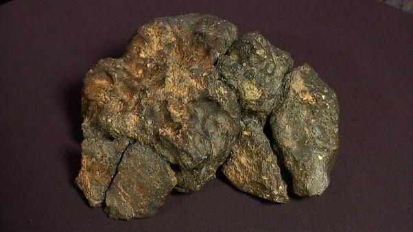 Meteorito lunar vai a leilão