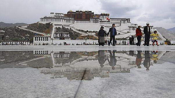 Esőerdő terült el a mai Tibet területén 40 millió éve