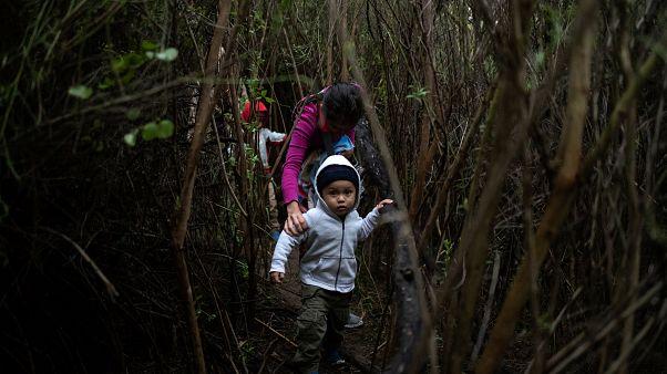 تهدید ترامپ به بستن مرزهای جنوبی؛ «پلیس مکزیک در مرز با گواتمالا مستقر شد»