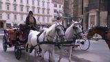 Wien streitet über die Fiaker