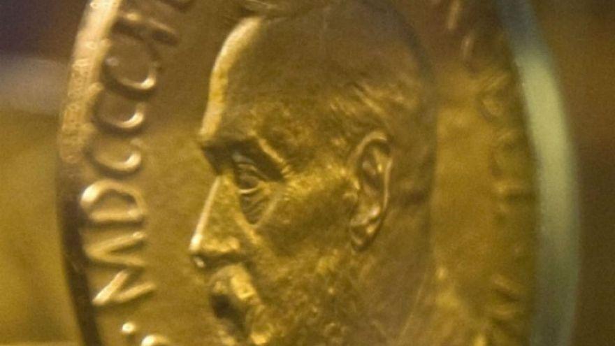 Nobel Akademisi skandal sonrası edebiyat komitesi için yeni üyesini seçti