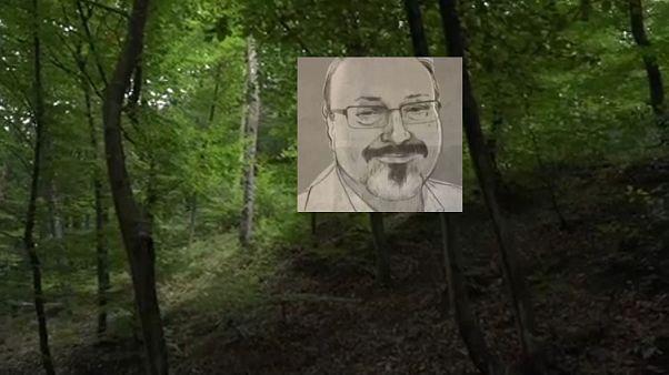 Egy isztambuli erdőben keresik az eltűnt szaúdi újságírót
