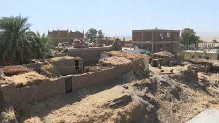 شاهد: قرية مصرية تواجه دماراً كبيراً بسبب غزو النمل الأبيض