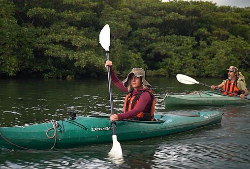 """Exploring Japan's """"Galapagos"""" island"""