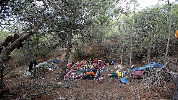 المغرب يعتقل 141 مهاجراً حاولوا اقتحام سياج حدودي مع إسبانيا ويعتزم ترحيلهم