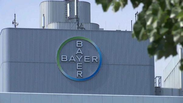 Monsanto-Prozess: Bayer will trotz geringerer Strafe in Berufung