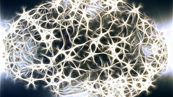 دماغك عبارة عن مليارات الحواسيب الصغيرة التي تعمل معاً!