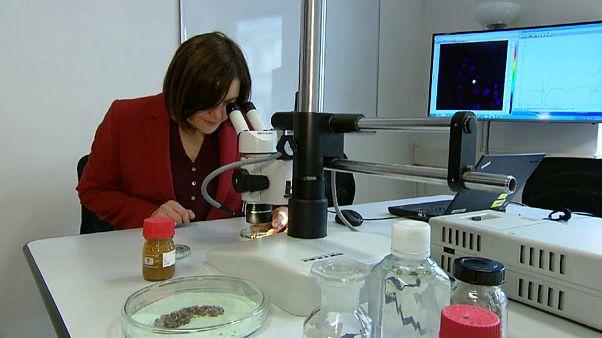 Araştırma: İnsan vücudunda mikroplastik tespit edildi