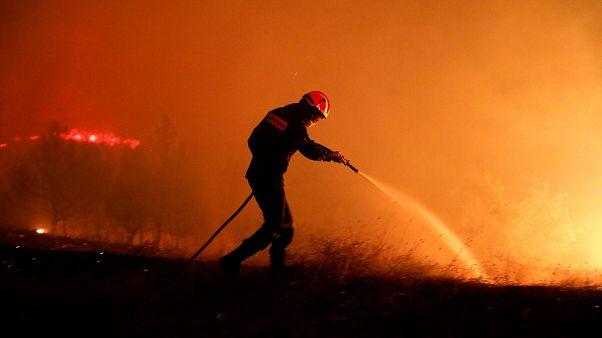 Bajo control el incendio de Eubea