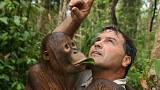 Todd Lemons' firm runs tropical wetlands and orangutan reserve Rimba Raya