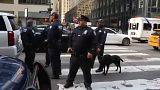 США: терроризм по почте