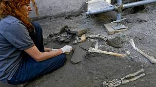 Archaeologists uncover 5 'undisturbed' skeletons at Pompeii | The Cube