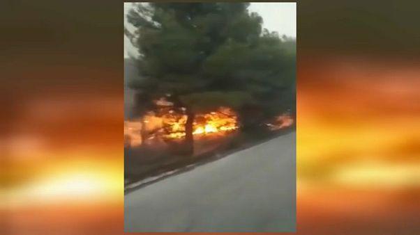 Starke Winde erschweren Kampf gegen die Flammen bei Thessaloniki