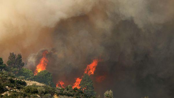 Χαλκιδική: Ολονύχτια μάχη με τις φλόγες στη Σάρτη