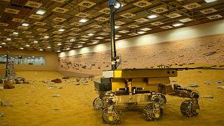 Wird Marsrover Bruno Leben auf dem roten Planeten finden?
