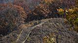 Barış sürecine giren Kuzey ve Güney Kore'den 22 askeri kuleyi yıkma kararı