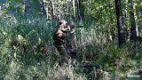 Accidents de chasse à répétition en France