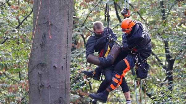 Hambacher Forst: Räumung der Polizei geht weiter. Aktivisten besetzen Baumhäuser.