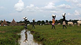 گرسنگی شدید در سودان جنوبی؛ خشونتها مانع ارسال کمکهای غذایی است