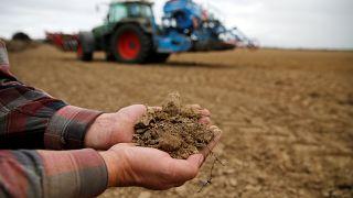 Ernteschäden: 340 Millionen Euro Nothilfe an Deutsche Landwirte