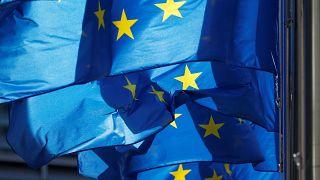 Maastricht Antlaşması'nın 25'inci yılı: Birlikten ayrılığa